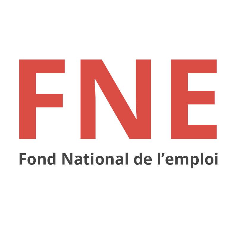 Logo-FNE.jpg